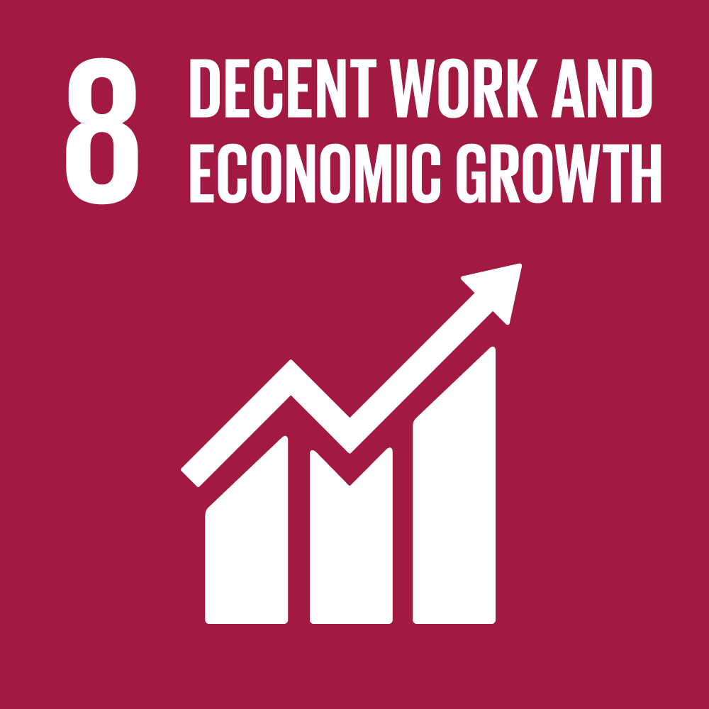Promote full and productive employment and decent work through access to finance